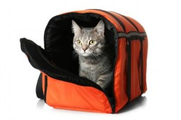 travel-cat-carrier-with-litter-box